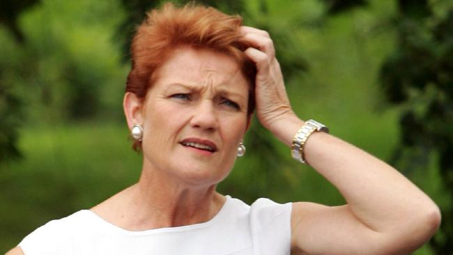 Pauline Hanson's irresponsible comments