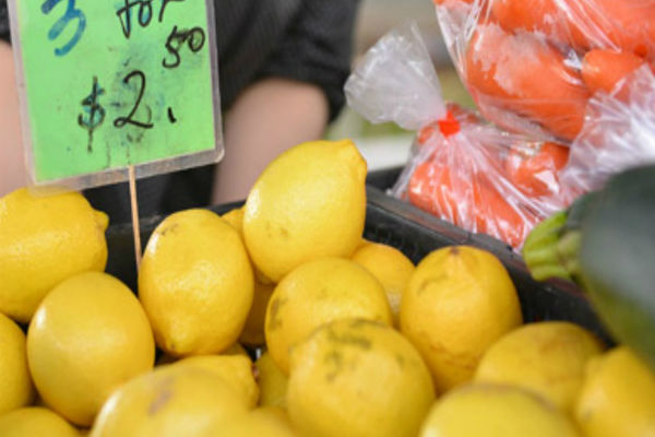 Article image for Dubbo Farmers Markets