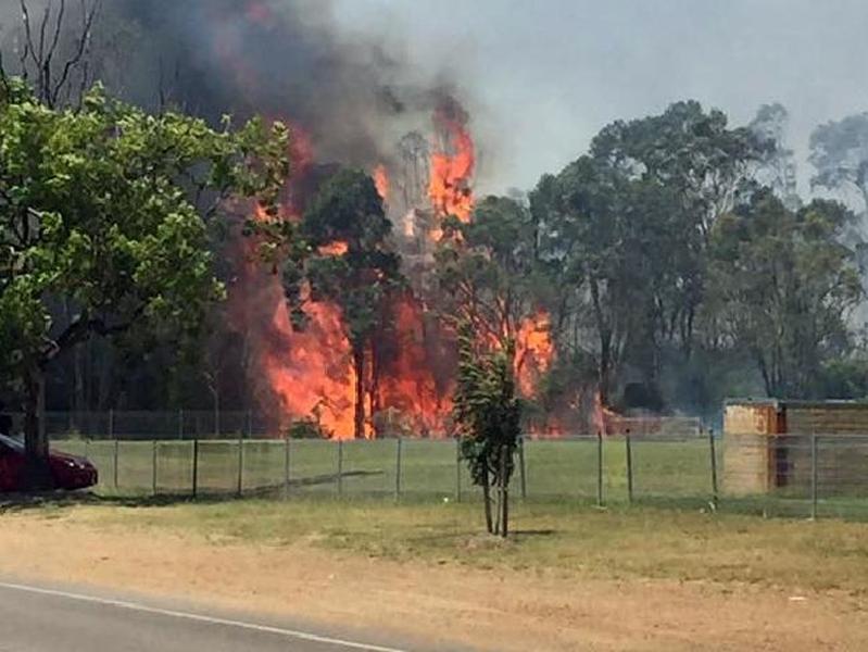 Man Arrested At Hunter Bushfire