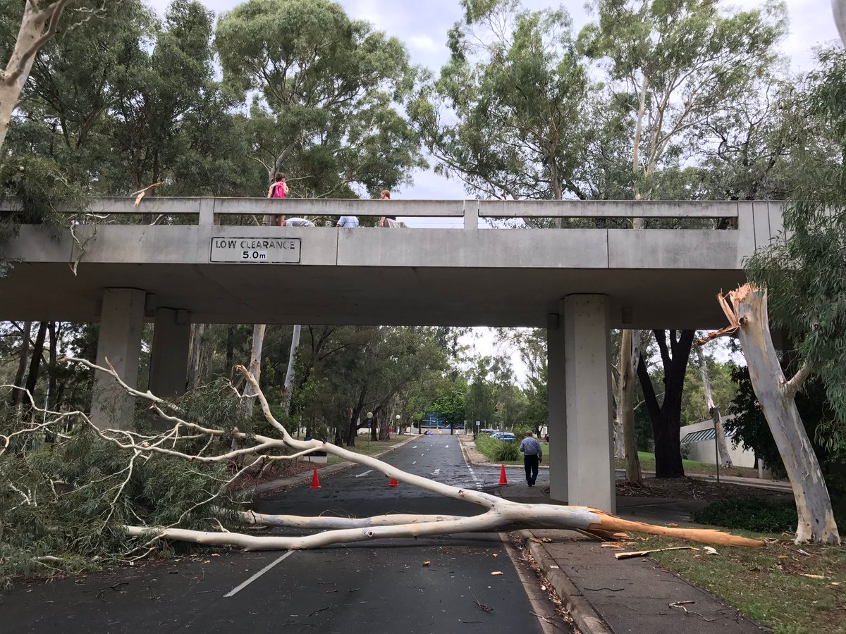 Freak Storm Wreaks Havoc In Canberra
