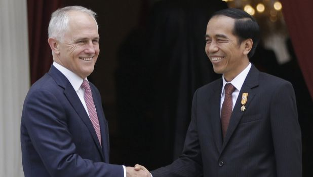 President Joko Widodo set to visit this weekend