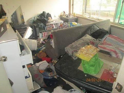 Article image for Trashed Public Housing