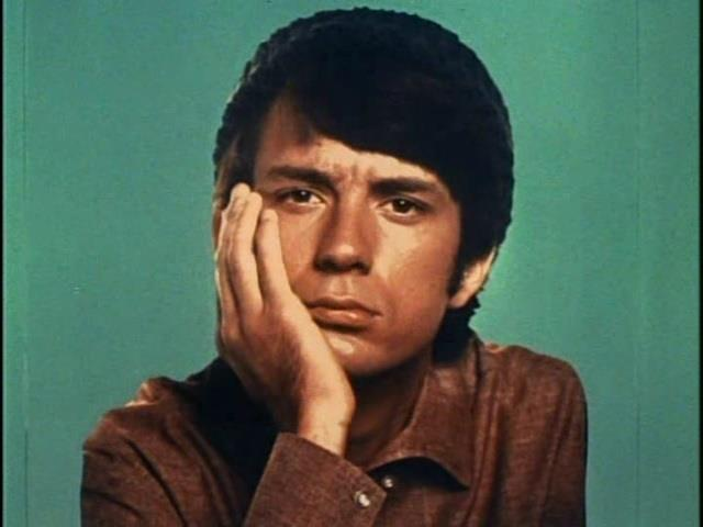 Michael Nesmith from The Monkees.