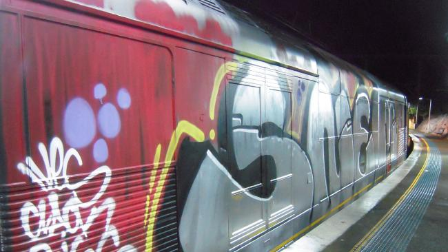 Train Vandal Idiots