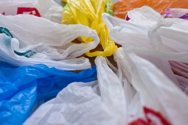 Worms to end plastic bag waste for good?