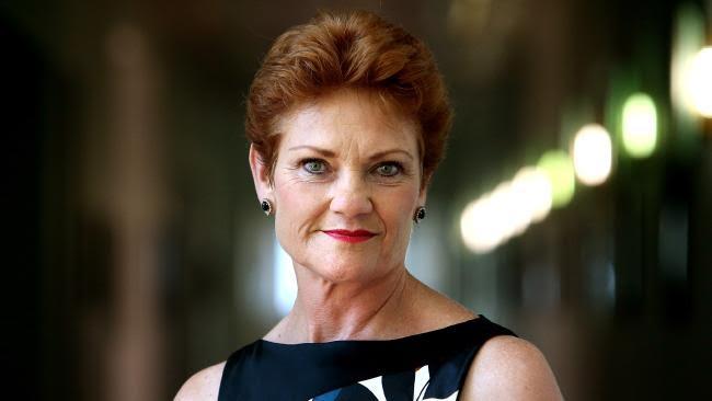 Pauline Hanson On Welfare Bill