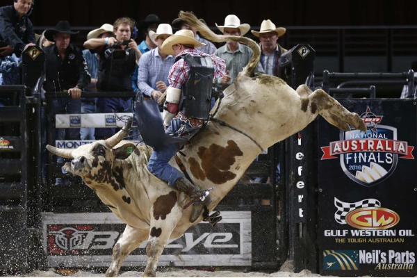 Barber by day, bull rider by night: Extraordinary Aussie Budd Williamson