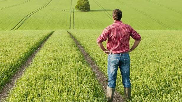 Green Tape Hurting Farmers