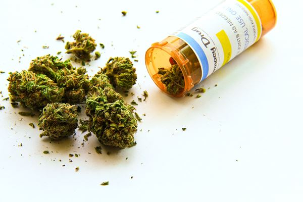 Doctors 'giving up' on prescribing medical cannabis due to red tape