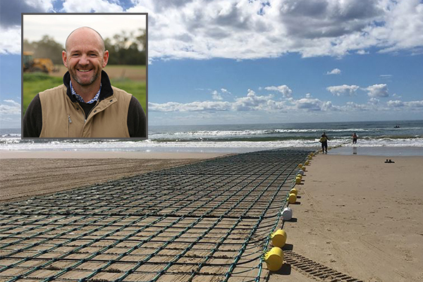 Article image for Shark nets could be removed from our beaches