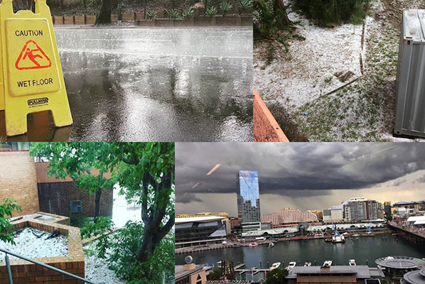 Article image for Hailstorm sweeps across Sydney