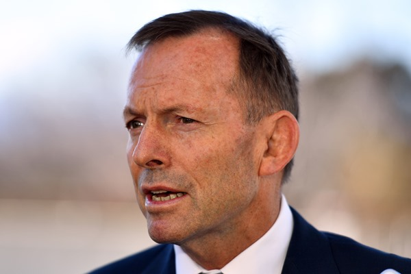 Former PM Tony Abbott responds to cabinet file accusations