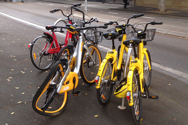 Group of oBikes