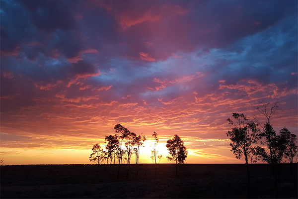 Article image for Stunning sunset sent in from country Australia