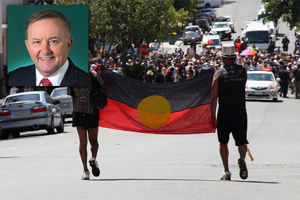 Article image for Anthony Albanese calls for twin referendum next Australia Day