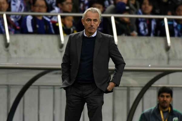 Former Socceroo says new coach is just a 'European replacement'