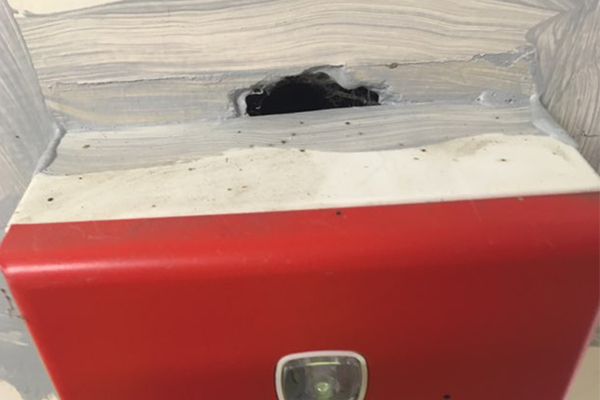 Poor asbestos sealing at Springwood depot revealed