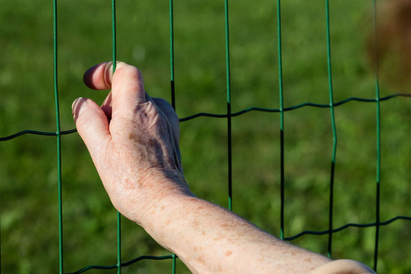 Study reveals aged care residents are fed worse than prisoners