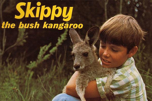 50-year anniversary of this iconic Aussie series