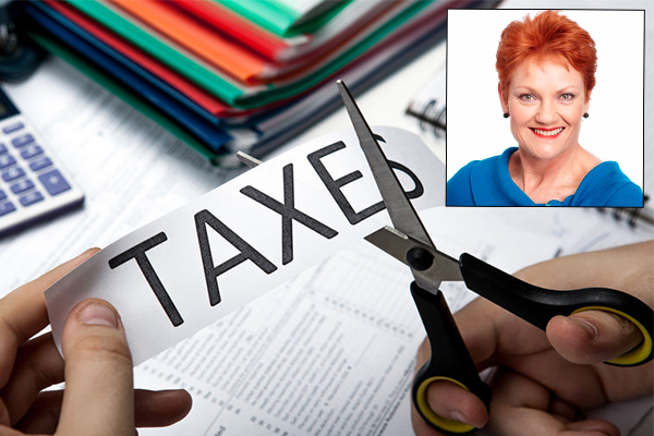 Article image for One Nation won't back proposed company tax cuts