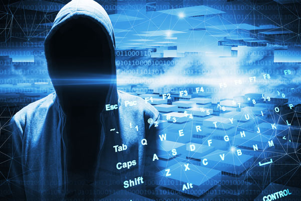 Article image for Government needs to step up as cybercrime becomes 'rampant'