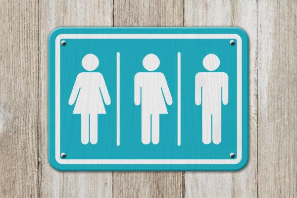 Article image for Liberal Senator Jim Molan slams 'insane' gender law