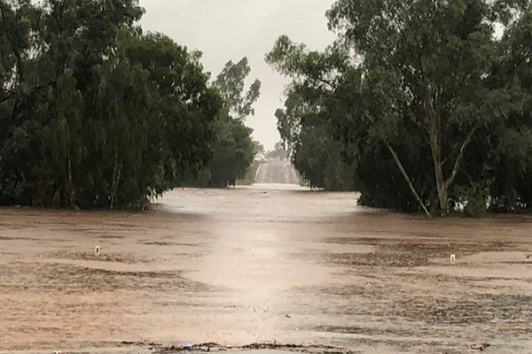 Article image for Towns saved by drought-breaking rains