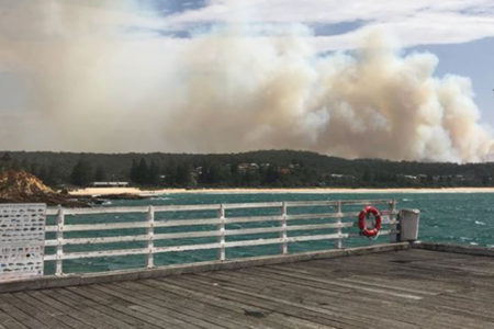 Tathra disaster: What residents can do now
