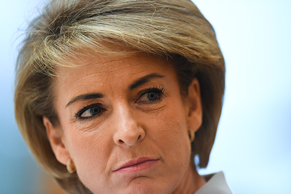 Liberal senator says Labor unleashed 'unrelenting campaign' on Michaelia Cash