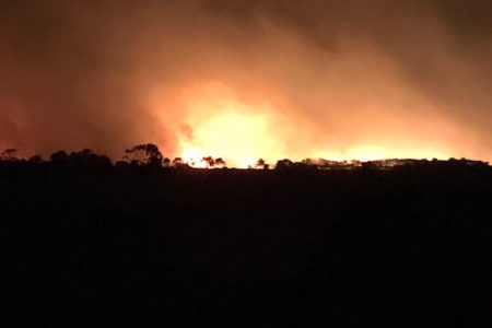 Resilient dairy farmers begin fire recovery