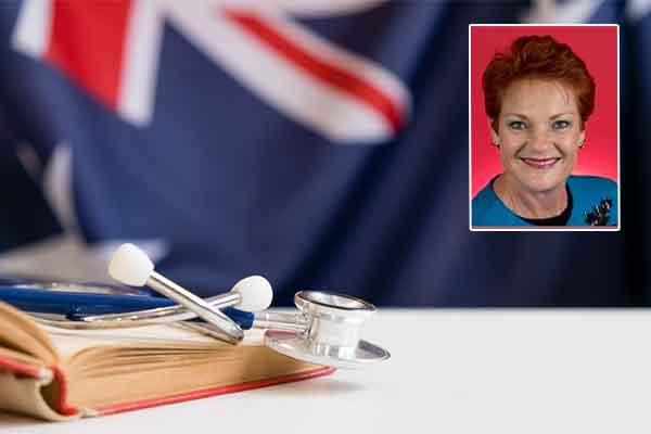 Pauline Hanson has 'grave concerns' over use of foreign aid