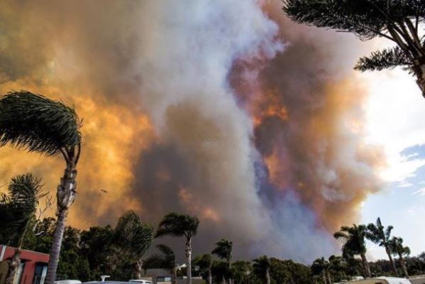 Article image for 'Lucky no one lost their lives' as Tathra is declared disaster zone