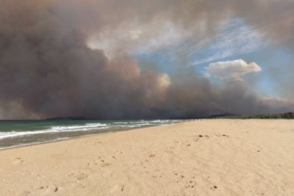 Article image for Bushfire evacuation messages not received by residents