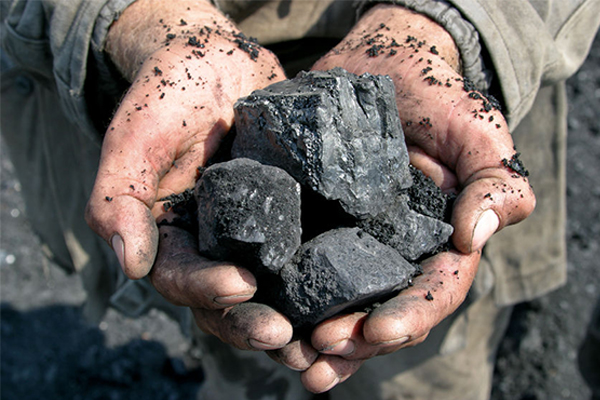 Article image for Coalition backbenchers lobby for coal under new forum