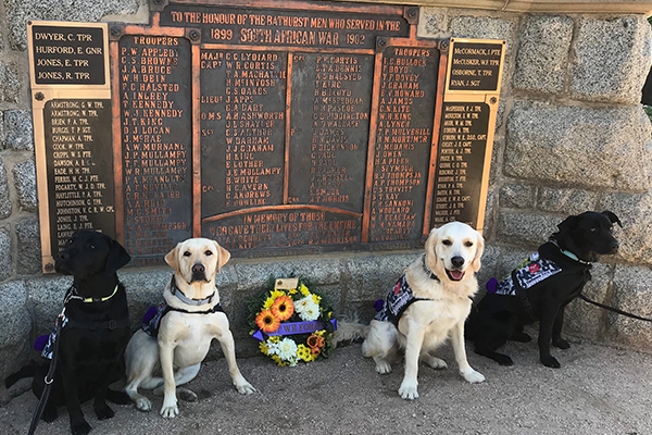 Dogs trained by inmates lead Anzac Day march