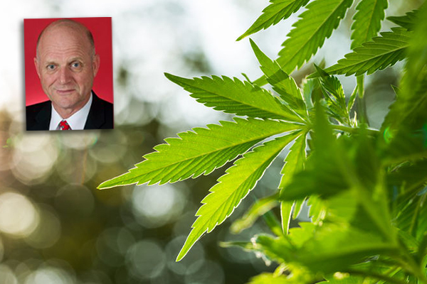 Article image for Marijuana: 'It's not the government's business to save you from yourself'