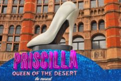 Priscilla is the feel good musical you must see