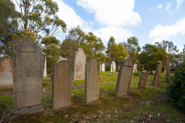 Article image for Sydney cemeteries desperate as space is running out