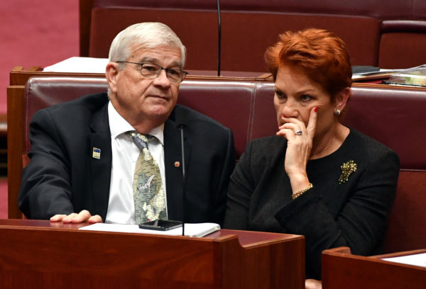 Article image for 'Never heard of him': Senator Burston denies One Nation defection… Shooters Director says he's lying