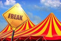 'It'll be a circus, it'll be a freak show': Rowan Dean on Palmer's political comeback