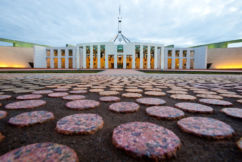 The week in politics with Luke Grant and Zed Seselja
