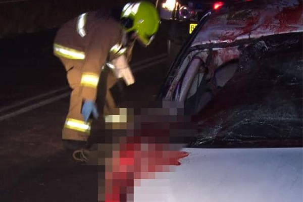 Article image for Mother of kangaroo crash victim calls for change after another freak accident