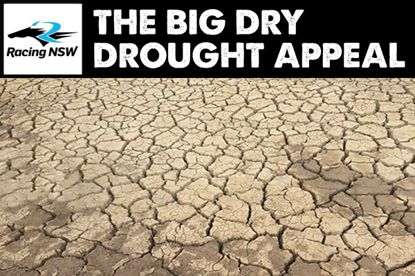 Article image for Racing NSW makes huge donation to #TheBigDry drought appeal
