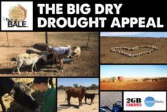 The Big Dry Drought Appeal