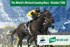 Bush gallopers, ordinary punters and drought-struck farmers winners of new $1.3 million race