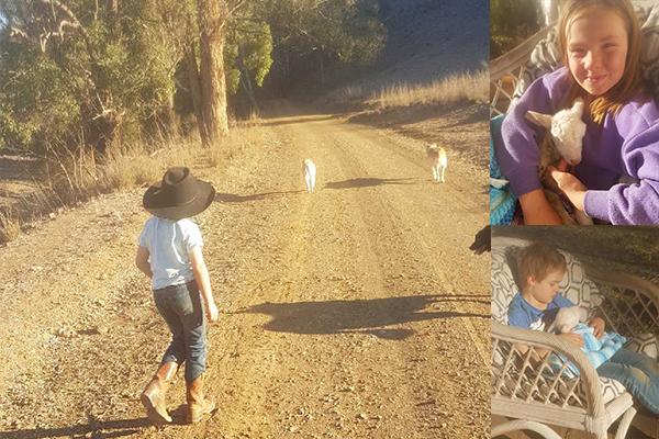 Article image for Struggling farming family make heartwarming call