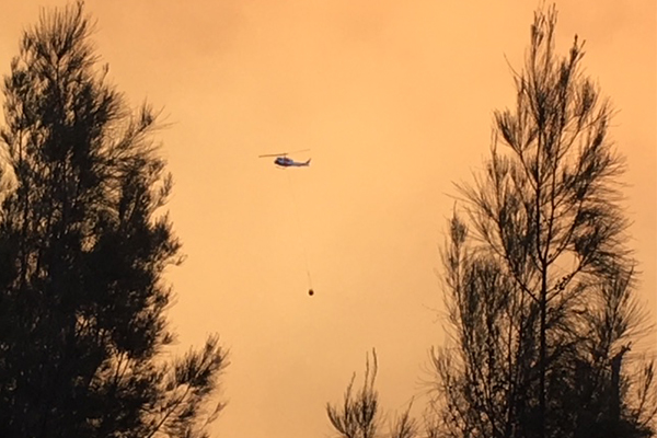 Article image for 'They can't get out': Terrified listeners describe out of control bushfires