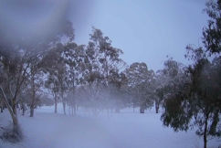 Snow falling across parts of New South Wales