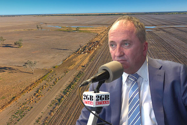 Article image for Barnaby Joyce: Farmers facing too much red tape to get relief