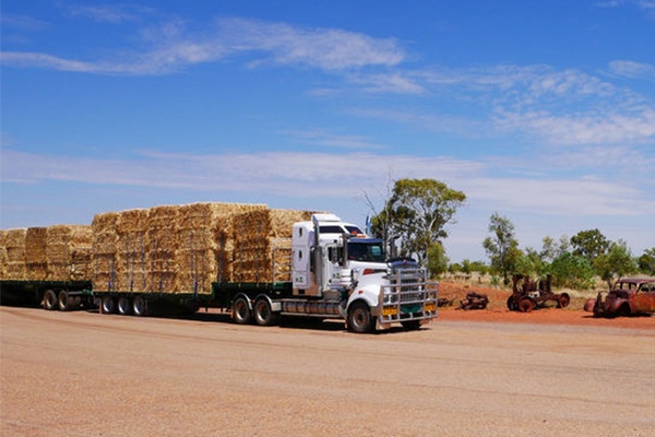 Article image for RMS officials 'targeted' trucks carrying hay to drought-stricken farmers